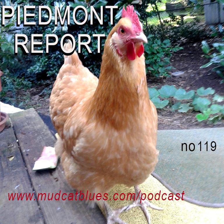 Piedmont Report 119