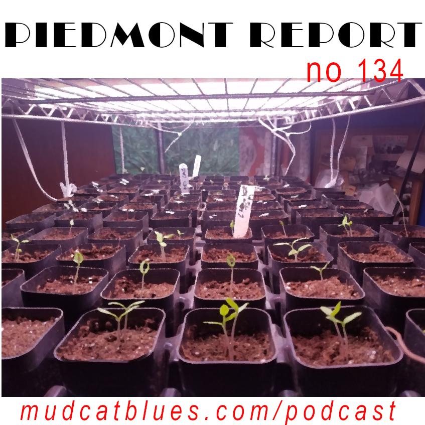Piedmont Report 134